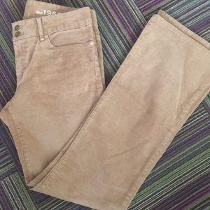 Gap New Camel corduroy perfect boot 8 cut pants